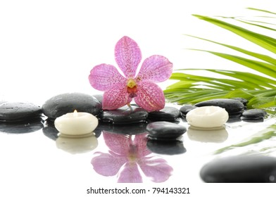 still life with black stones and pink orchid, candle, bamboo leaf