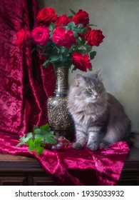 Still life with bouquet of red roses and pretty gray kitty