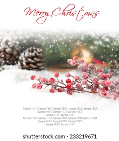 Still life with branch full of red baubles covered with snow with white space for the text