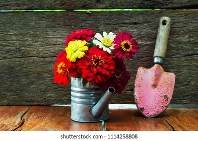 Still life Colorful flowers with watering Can flower pot  and red graden tools on wood backgrounds