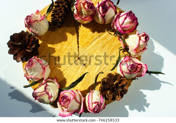 Still life with dry pink roses, cones on the wood background with crack