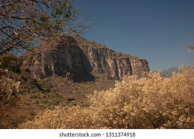 Still life and ecosystem of the hill of the speaker in a state of Mexico