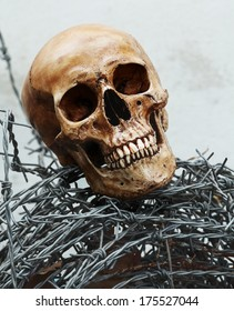 Still life fine art photography on human skeleton criminal concept with barbed wire