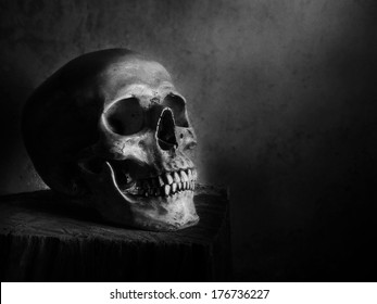 Still life fine art photography on human skeleton on wood log and red background black and white version with film grain