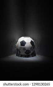 Still life with football and spider net