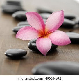 Still life with frangipani flower and stone zen spa on wood