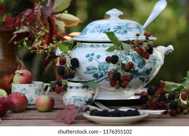 Still life with fresh branches with berries in old antique faience soup tureen, silver plate ladle, spoon, fork on saucer, vintage plant in ceramic pot, apples in tea cup on wooden aged table, day