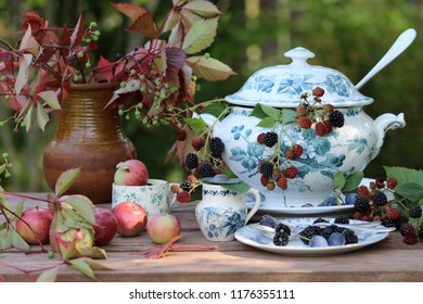 Still life with fresh branches with berries in old antique faience soup tureen, vintage silver plate ladle, spoon, fork on saucer, plant in ceramic pot, apples in tea cup on wooden aged table, day