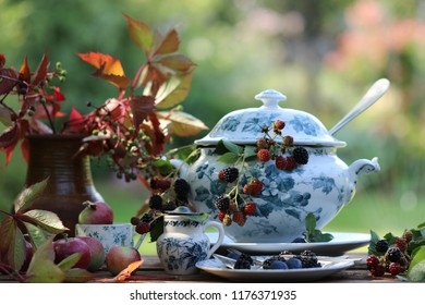 Still life with fresh branches with berries in old antique faience soup tureen, vintage silver plate ladle, plums on saucer, plant in ceramic pot, apples on wooden aged table on garden background