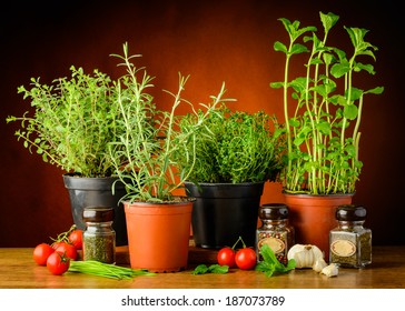 still life with fresh green herbs in pots