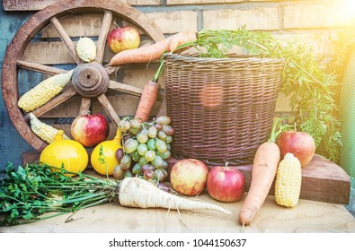 Still life of fruits and vegetables in autumn. Rural food scene. Yellow sun rays.