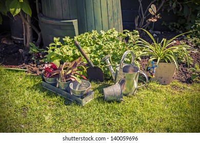 still life of garden tools