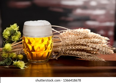 Still life with glass of beer and barley