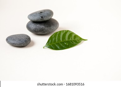 Still life : a green leaf lying near the stones, a place for text, a time of meditation