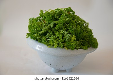 still life - green parsley in a dish sieve
