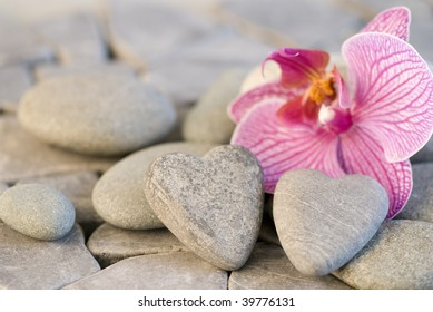 still life with heart shaped pebble and orchid