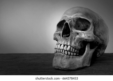 Still life with human skull on wood table in black and white color.
