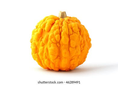 Still life image of a small pumpkin on white background