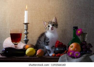 still life with kitten pumpkin grapes dog rose green bottle grap