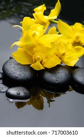 still life with lying on yellow orchid and black stones