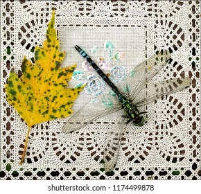 Still life on square lace doily