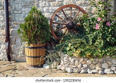 Still life outdoors with a cartwheel and a wooden tub with a thuja.