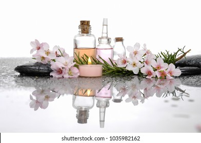 still life with pebble and with cherry blossom ,bottle oil, green Leaf reflection