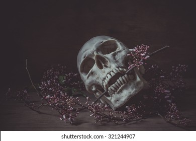 Still life photography with a human skull and branch of  flower in the dark night on wood table