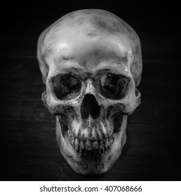 Still life photography with human skull