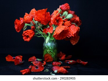 still life with poppies - closeup