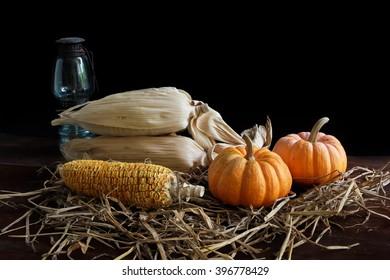 Still life. Pumpkins, corns and lantern.