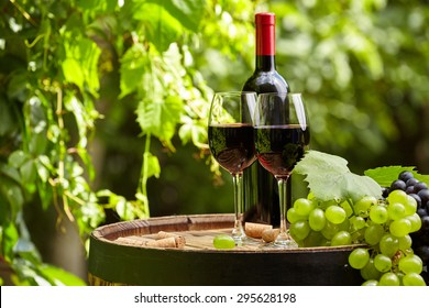 still life with red wine on garden terrace