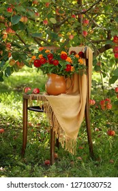 still life with red zinnias on a chair under an apple tree
