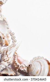 Still life  seashells on a white background. Beautiful background, frame
