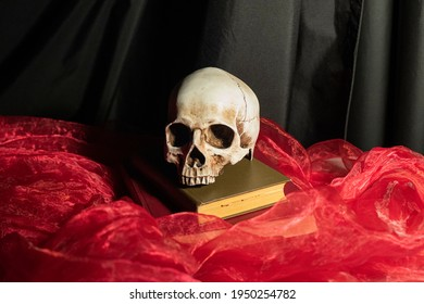 still life with a skull and books on a red background