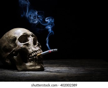 "Still life skull and cigarette people smoke cigarette and get toxin body look like way to die. In the day "" World No Tobacco Day"" please quit or stop smoke for good health."
