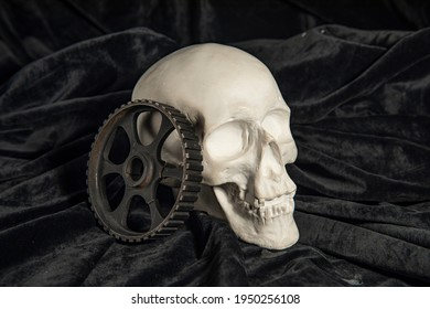 still life with a skull and an iron gear on a black background