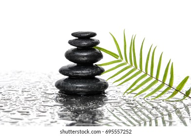 still life with stacked black stones and fern and bamboo leaf