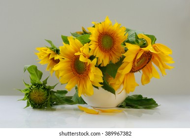 Still life with sunflowers in white vase