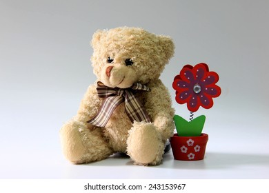 Still life of teddy bear