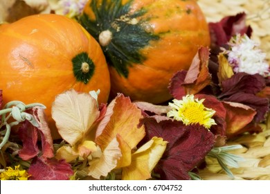 Still life with two small orange pumpkins and diadem from autumn leaves and flowers