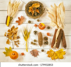 Still Life of a Variety of Fall Nature Items found Outdoors Arranged on Rustic White Boards with warm toned antique treatment