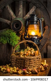 Still life of yellow boletus mushrooms in a basket