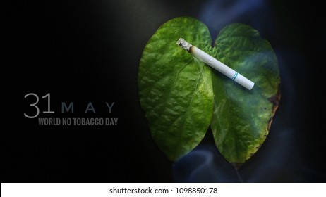 Still light of a smoking cigarette on leaf lung shaped on black background. Selective focus and toned image. Shooting in studio, World No Tobacco day and Healthcare idea concept