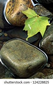 A still pool of water with smooth rocks and a Maple leaf