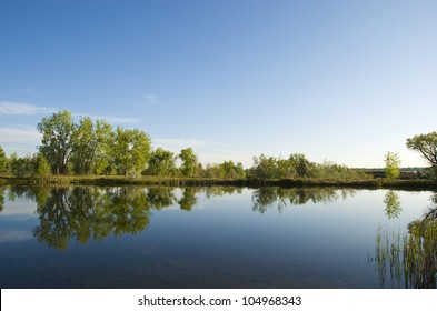 Still small lake with reflections of cottonwoods, on a quiet summer morning on the Colorado prairie