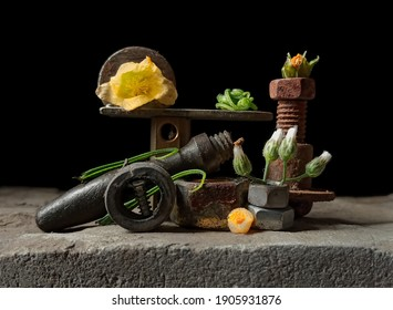 stilllife genre with old and rusty objects or tools decorated with small flowers and vines