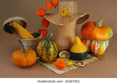 Still-life from pumpkins in a dry grass with dried segments of an orange, physalis and corn