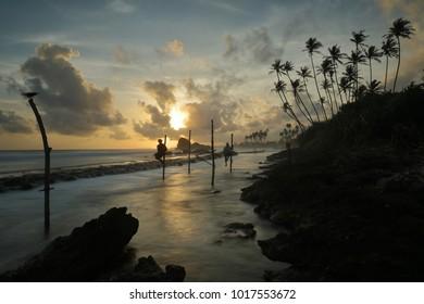The stilt fishermen in the sunset at Koggala in Sri Lanka