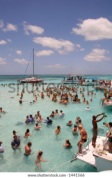 Sting Ray City - Grand Cayman Islands